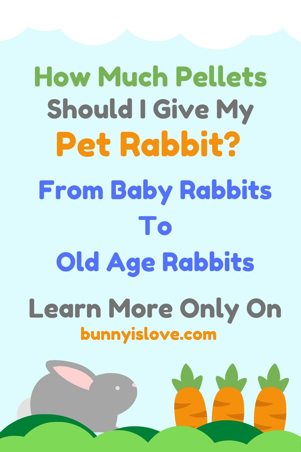 how much pellet does a rabbit eat
