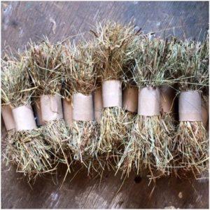 rabbit hay toy