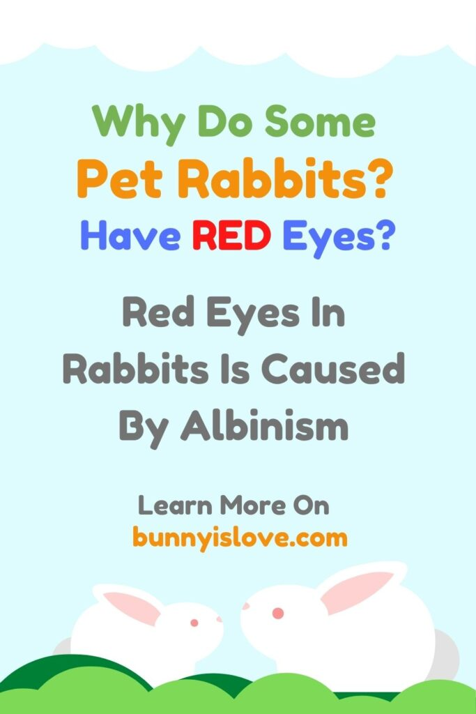 Rabbits Have Red Eyes