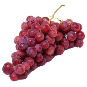 red grapes for rabbits