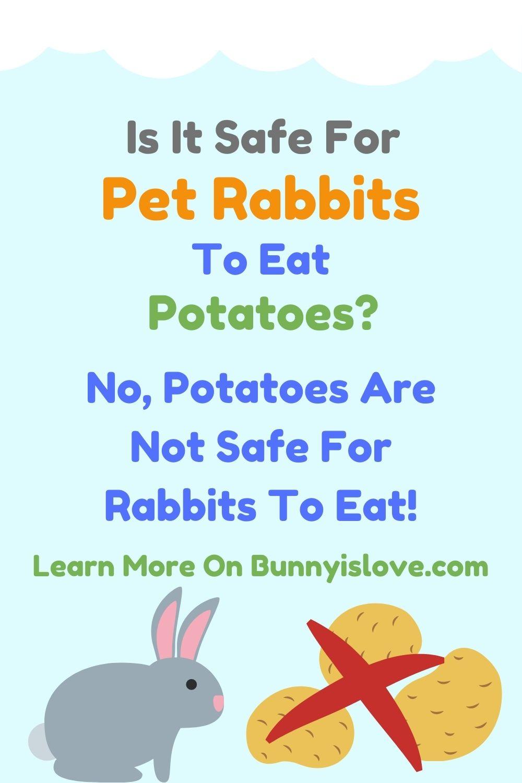 can rabbits eat potato pin