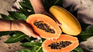 can rabbits eat papaya