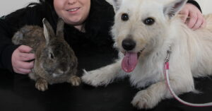 introducing dogs and rabbits